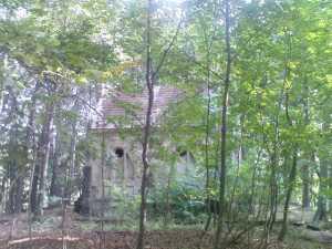 Mezi stromy začala prosvítat nějaká stavba